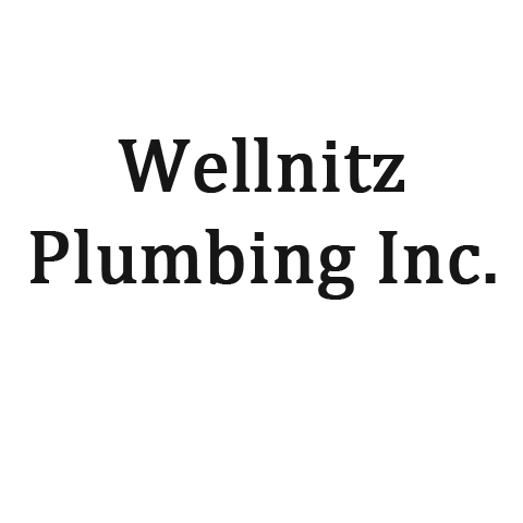 Wellnitz Plumbing Inc. - Plumbing Or Related Services - Little Chute, WI - Logo